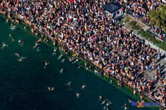 Massenschwimmen