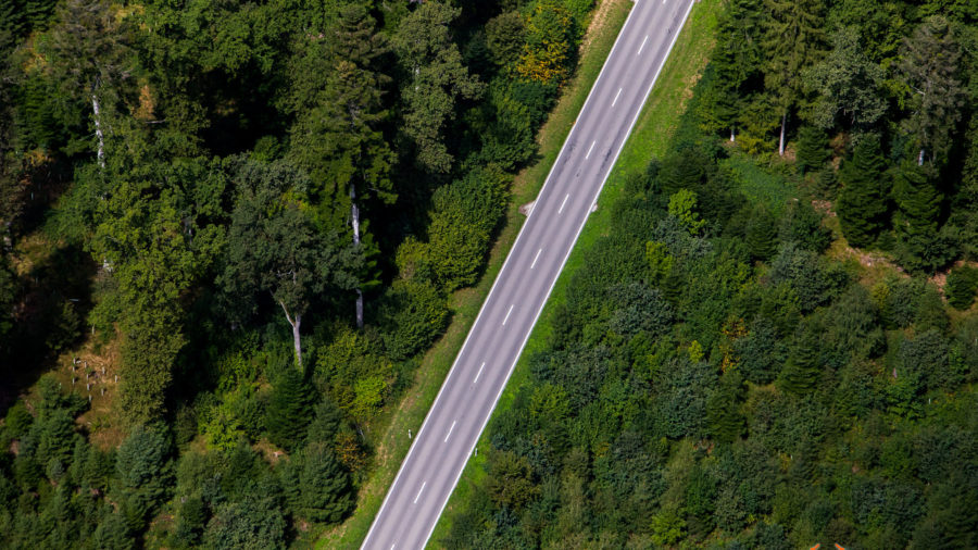 Wald-Strasse